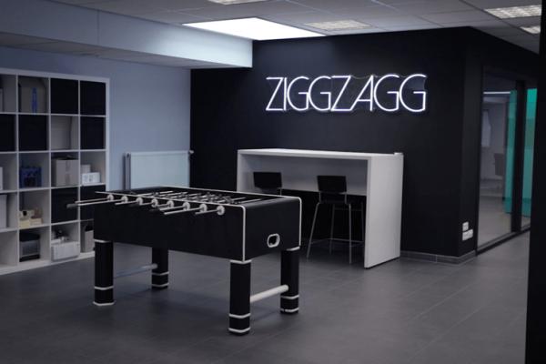 ZiggZagg case (7)